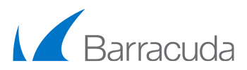 Capital Outsourcing Partners - Barracuda
